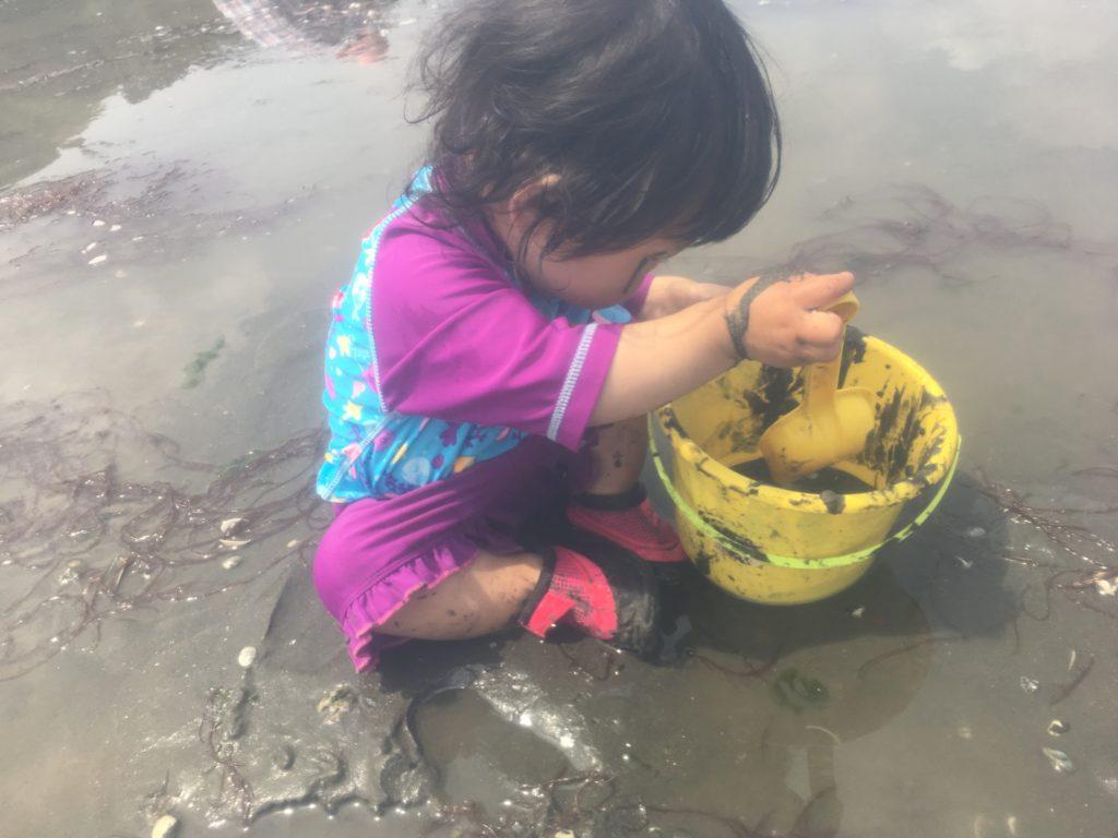 子供と潮干狩りを楽しむポイント